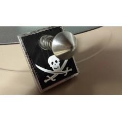 Plaque lance bille pirate